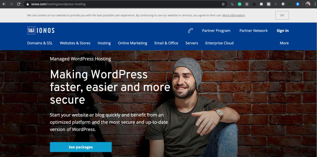 1&1 wordpress hosting
